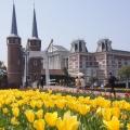风车,郁金香,城堡----豪斯登堡